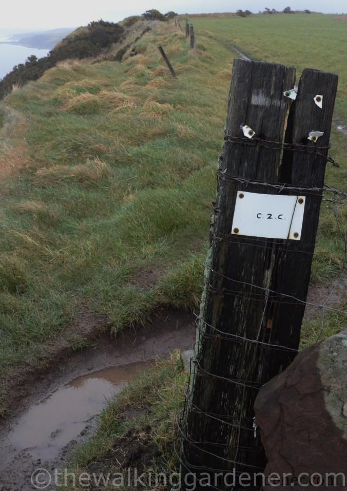 C2C Route Marker (2)