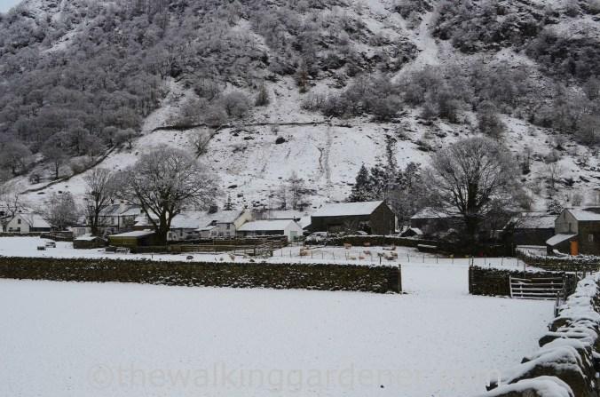 Stonethwaite Borrowdale