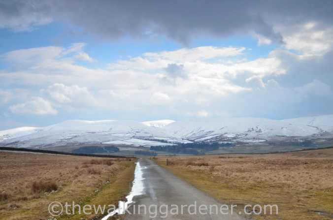 Howgill Fells Coast to Coast (2)