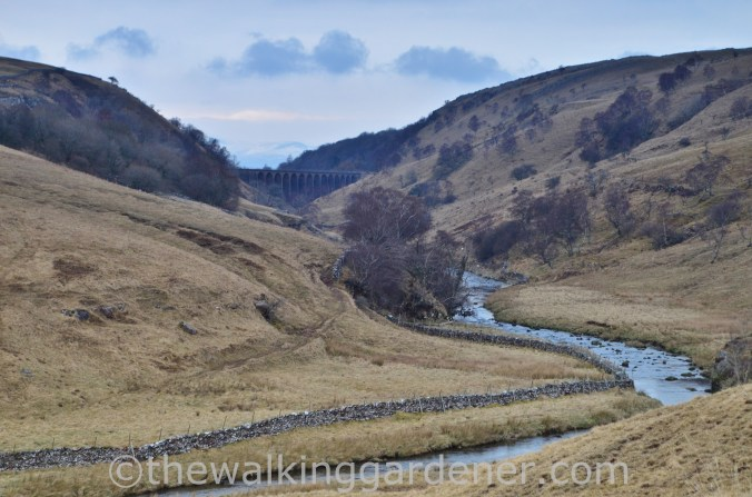 Smardale Gill viaduct Coast to Coast