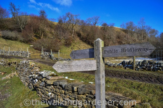 Coast to Coast Keld to Reeth (1)