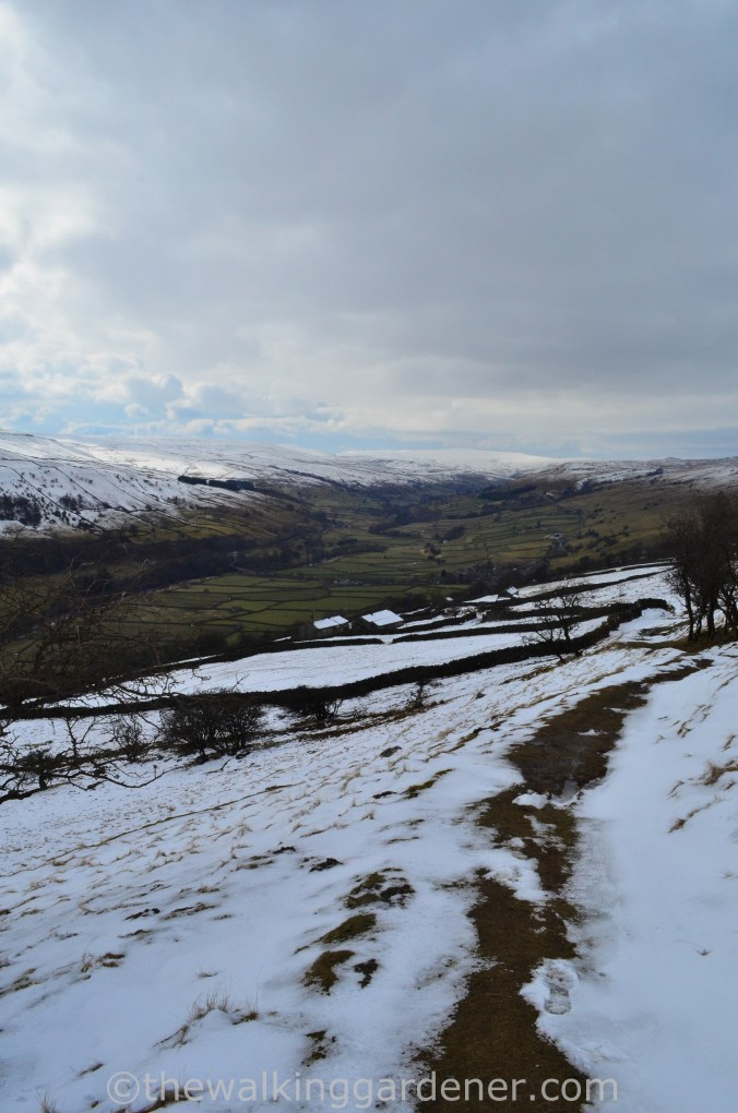Coast to Coast Keld to Reeth (8)