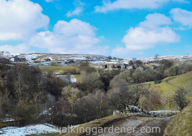 Keld-in-swaledale