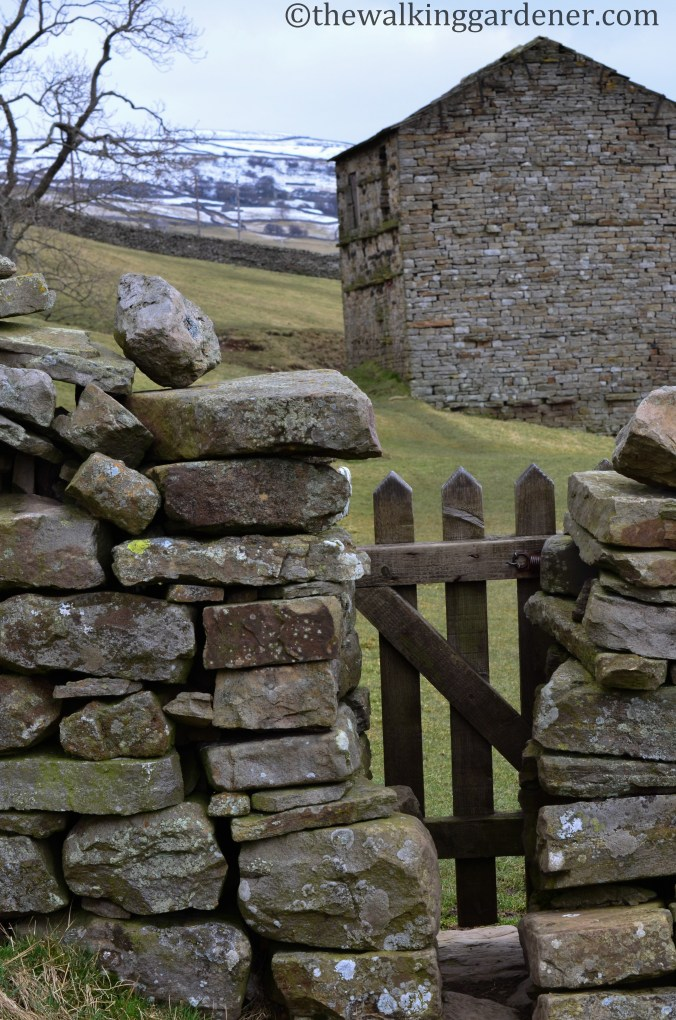 Squeeze-stile-Swaledale