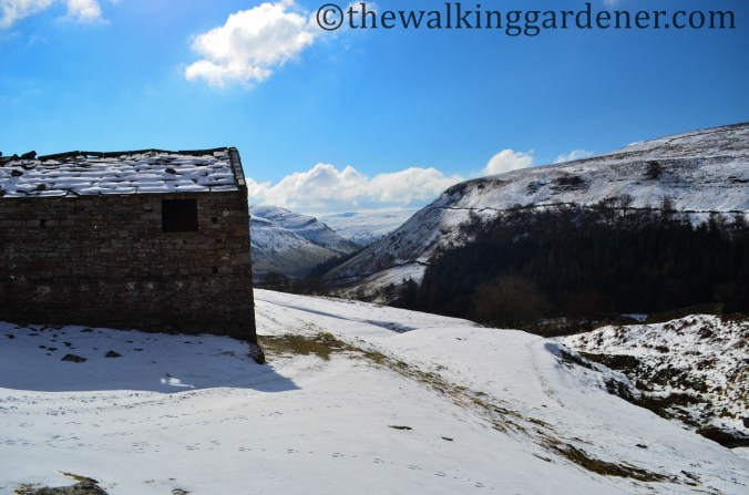 Swaledale-in-snow