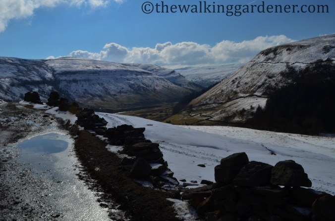 Upper-Swaledale-02
