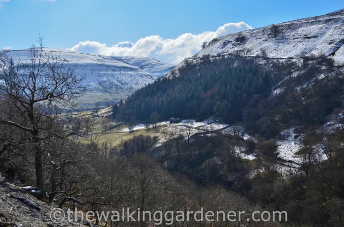 Upper-Swaledale