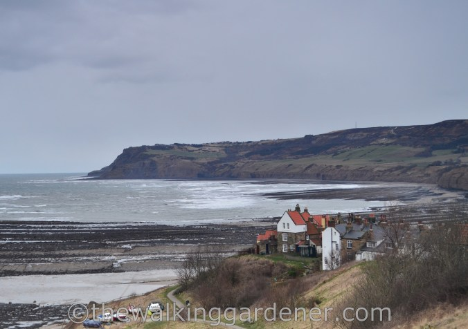 Coast to Coast Robin Hood's Bay (4)