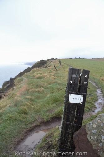 Coast to Coast Signs (1)