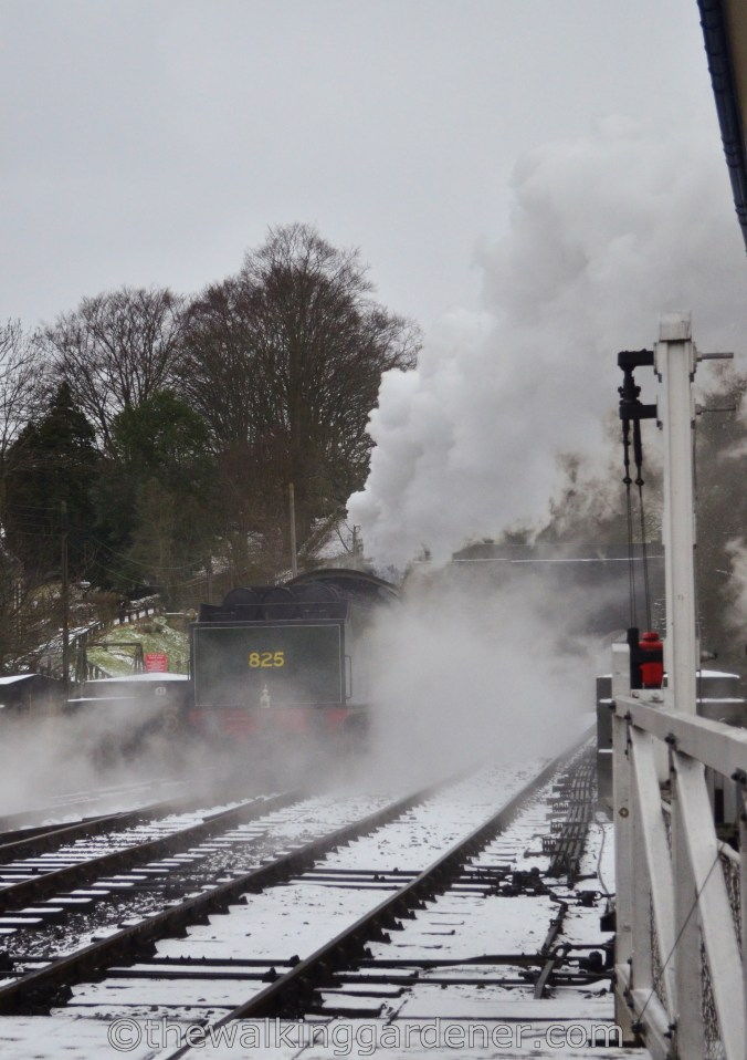 North York Moors Railway Grosmont (2)