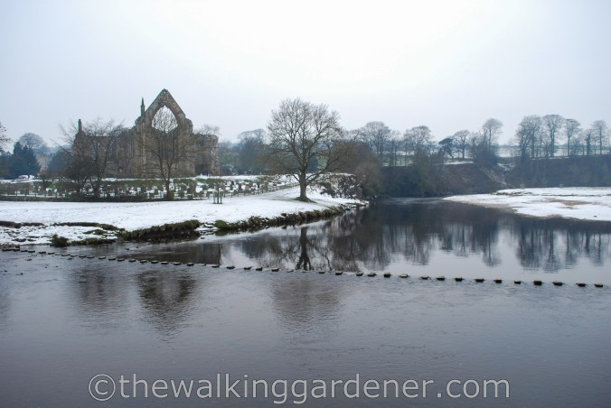Bolton Priory Dales Way (2)