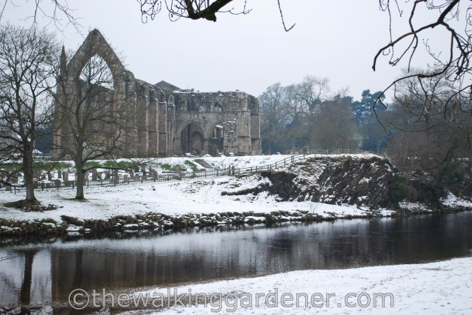 Bolton Priory Dales Way (3)