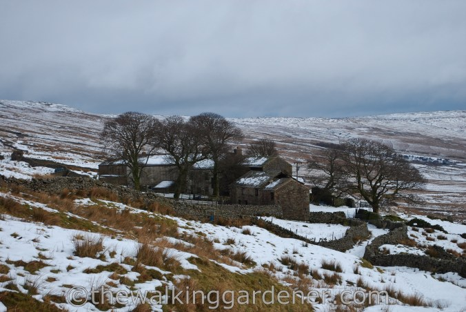 Cam Houses The Dales Way