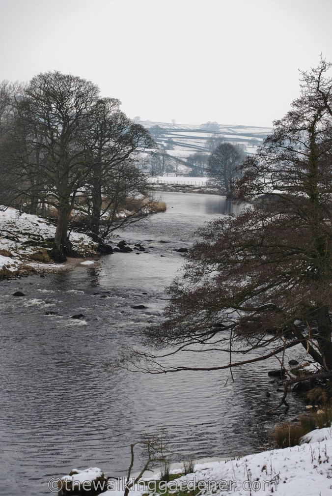 Dales Way Day Ilkley to Burnsall (4)