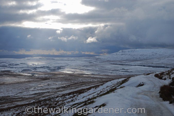 The Dales Way (3)