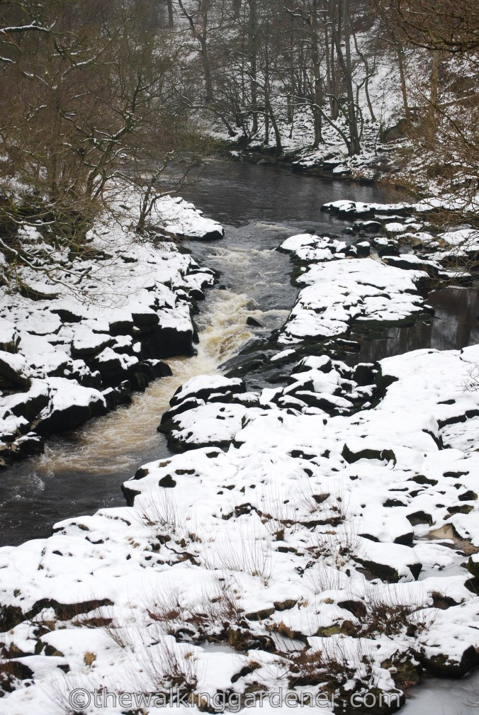 The Strid Dales Way