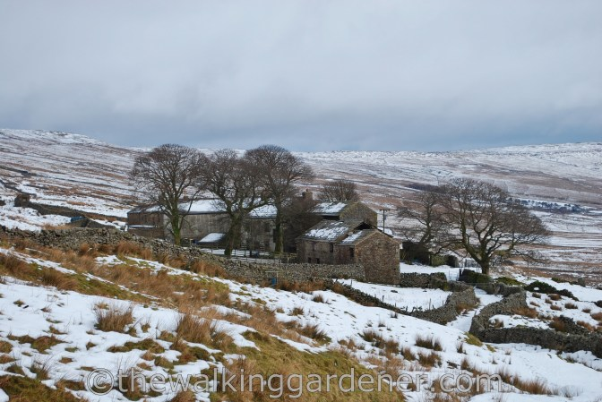 Cam Houses Dales Way (7)