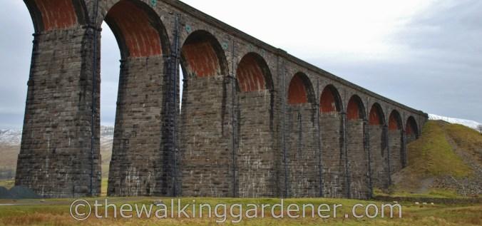 Ribblehead Viaduct Dales Way (3)