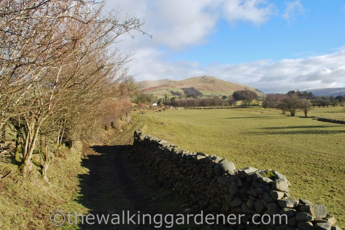Dales Way Day 5 Howgill Fells