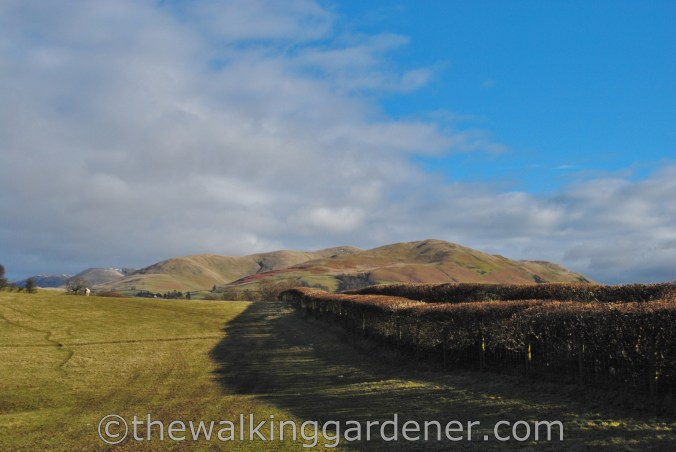 Howgill Fells Dales Way (1)