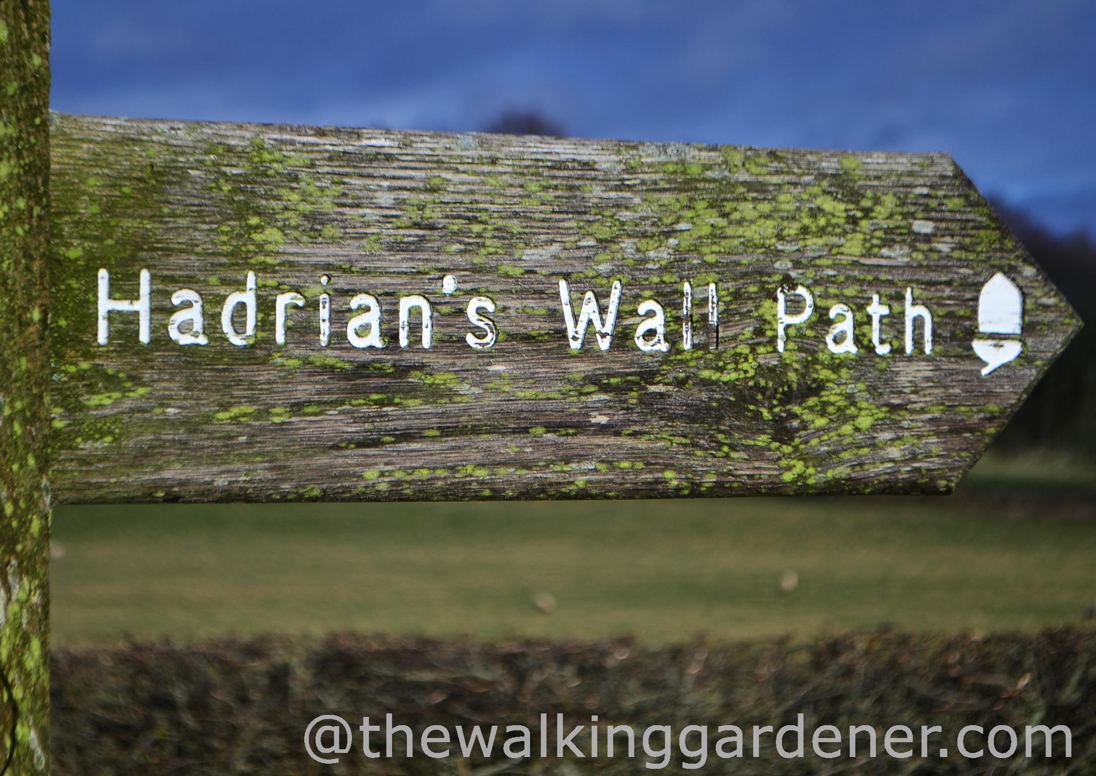 Hadrian's Wall Path 2014