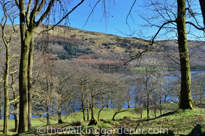 Coniston Water Cumbria Way (2)