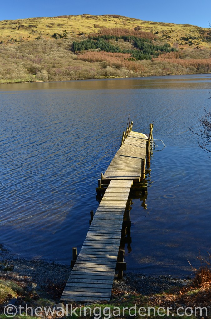 Coniston Water Cumbria Way (3)