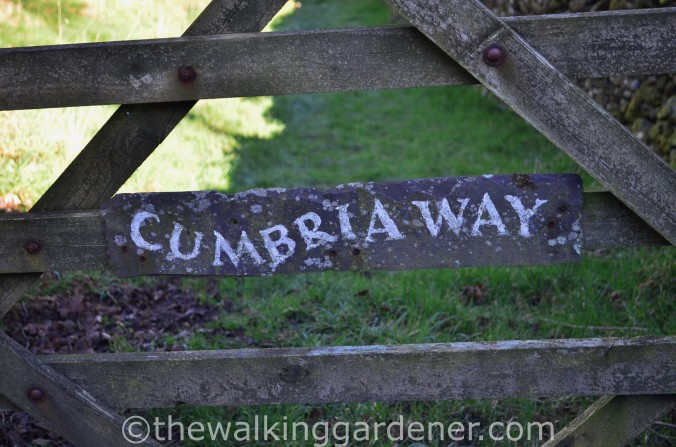 Cumbria Way Sign (2)