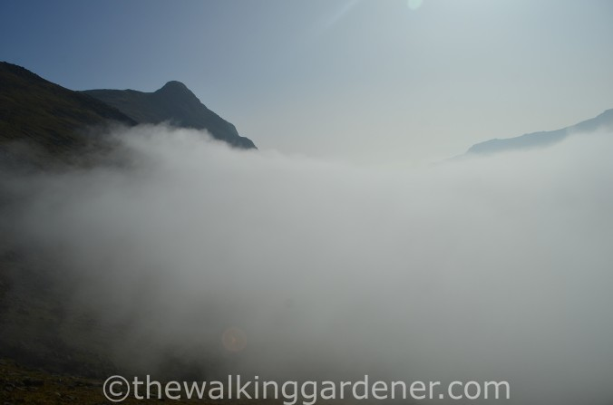 Cloud Inversion Lake District (2)