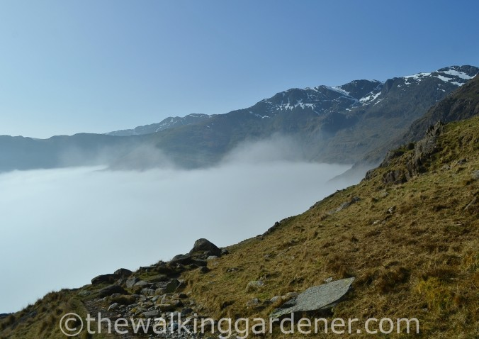 Cloud Inversion Lake District (3)