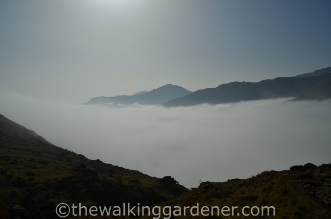 Cloud Inversion Lake District (4)