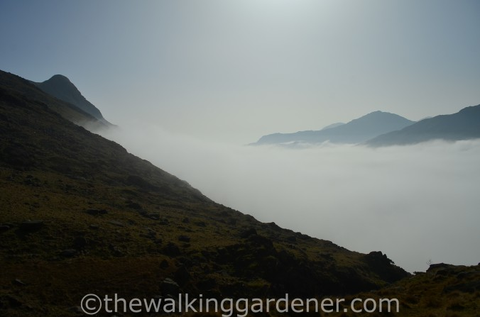 Cloud Inversion Lake District (5)