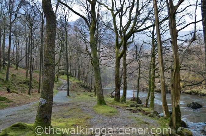 Cumbria Way Great Langdale to Keswick (1)