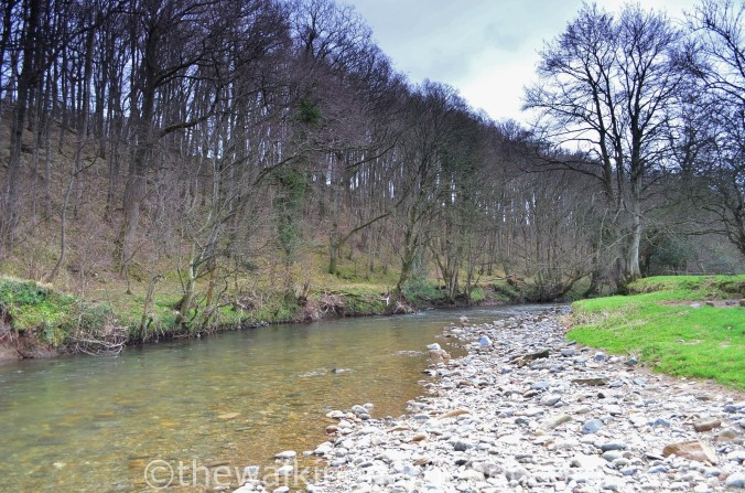 River Caldew Cumbria (2)