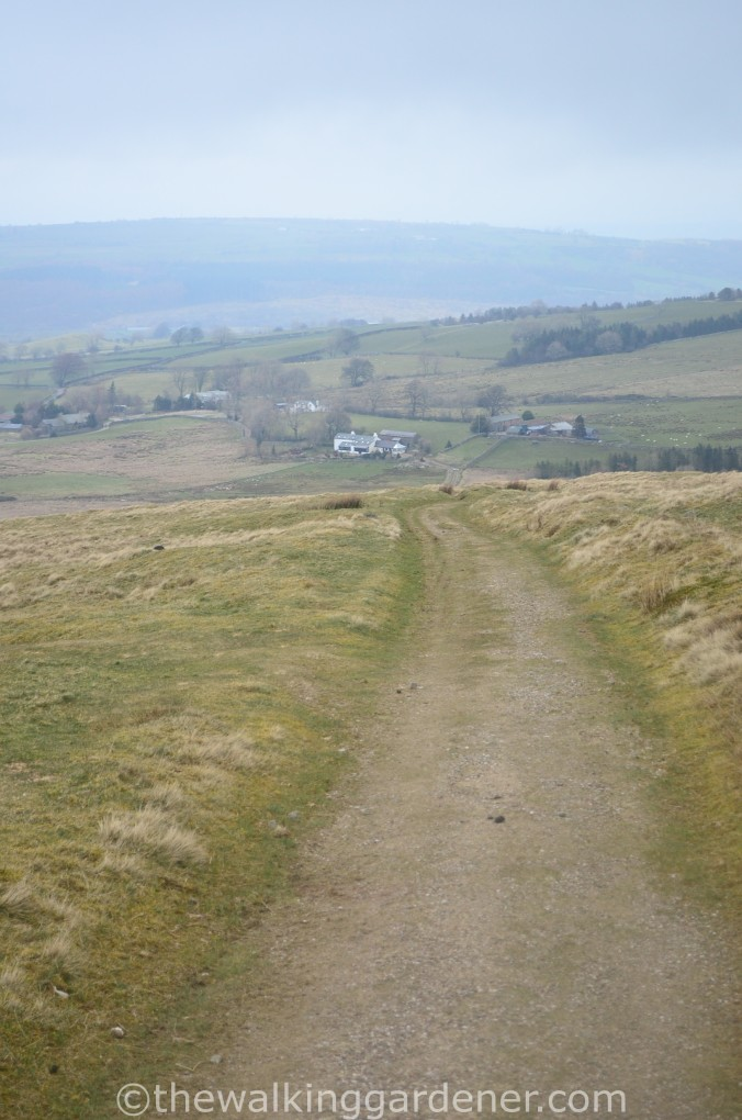 Cumbria Way Keswick to Caldbeck (3)