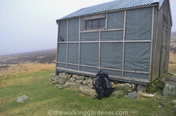 Great Lingy Hut (1)