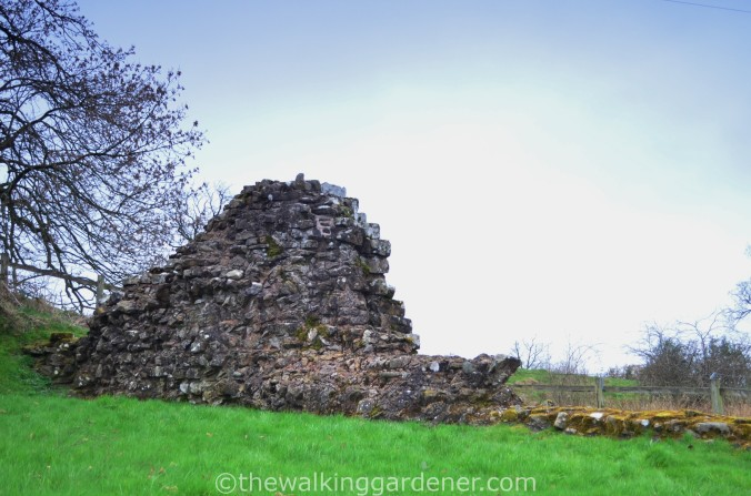Hadrian Walls Path Carlisle to Gilsland (13)