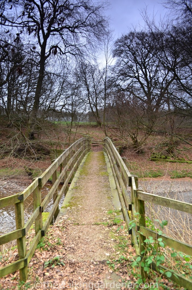 Hadrian Walls Path Carlisle to Gilsland (6)