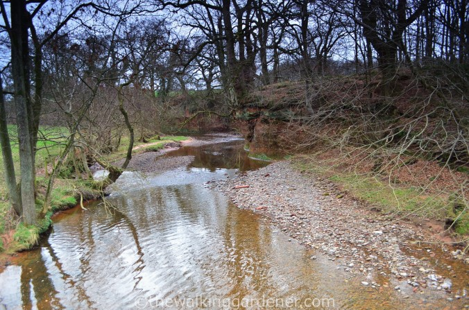 Hadrian Walls Path Carlisle to Gilsland (7)