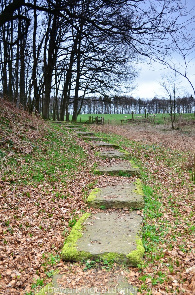 Hadrian Walls Path Carlisle to Gilsland (9)