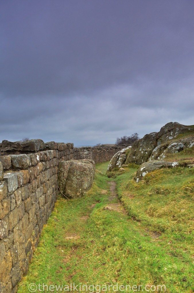 Hadrians Wall Walltown Crags 02