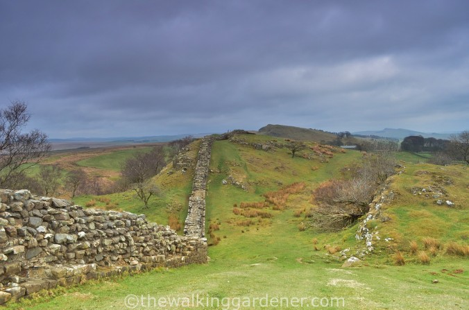 Hadrians wall walltown Crags 03