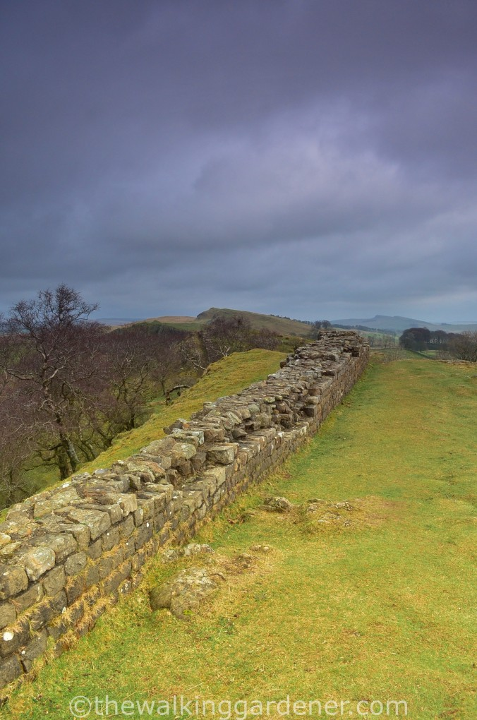 Hadrians Wall Walltown Crags
