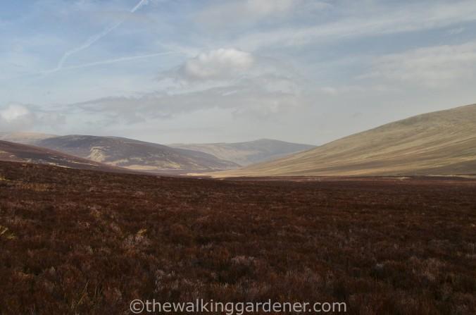 High Pike Cumbria Way