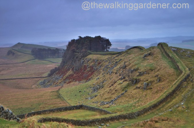 Housesteads Crags 02