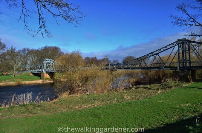 River Eden Carlisle (2)