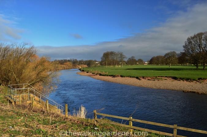 River Eden Carlisle