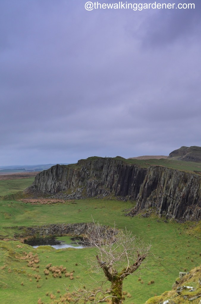 Walltown Crags 02