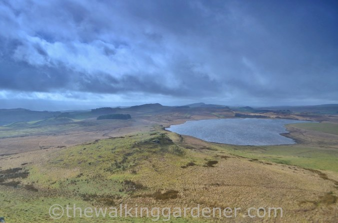 Broomlee Lough Hadrian's Wall (1)