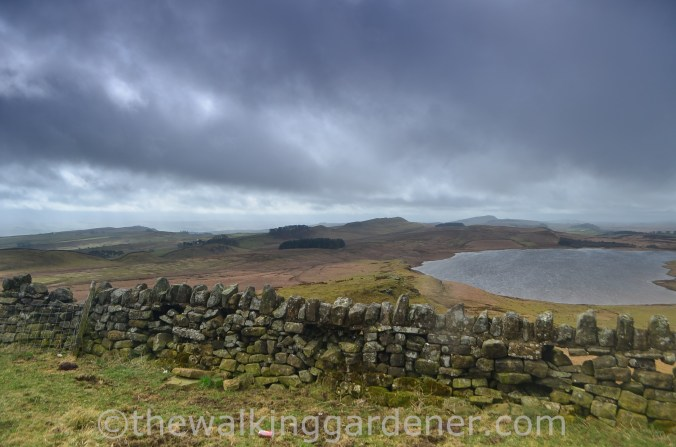Broomlee Lough Hadrian's Wall (2)